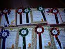 награды победителям и участникам